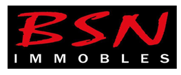 Logo Bsn Immobles